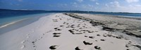 """Footprints on the beach, Cienfuegos, Cienfuegos Province, Cuba by Panoramic Images - 36"""" x 12"""""""
