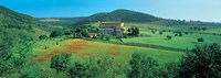 "High angle view of a church on a field, Abbazia Di Sant'antimo, Montalcino, Tuscany, Italy by Panoramic Images - 36"" x 12"""