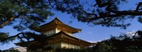 """Low angle view of trees in front of a temple, Kinkaku-ji Temple, Kyoto City, Kyoto Prefecture, Kinki Region, Honshu, Japan by Panoramic Images - 36"""" x 12"""""""