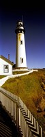 """Lighthouse on a cliff, Pigeon Point Lighthouse, California, USA by Panoramic Images - 12"""" x 36"""""""