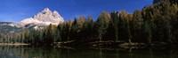 "Trees at the lakeside, Lake Misurina, Tre Cime Di Lavaredo, Dolomites, Cadore, Province of Belluno, Veneto, Italy by Panoramic Images - 36"" x 12"""