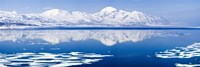 Reflection of a mountain range in an ocean, Bellsund, Spitsbergen, Svalbard Islands, Norway Fine Art Print