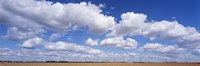 """Clouds over a field near Edmonton, Alberta, Canada by Panoramic Images - 36"""" x 12"""""""