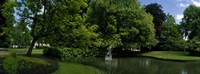 """Trees in a park, Queen Astrid Park, Bruges, West Flanders, Belgium by Panoramic Images - 36"""" x 12"""""""