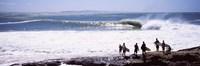 Silhouette of surfers standing on the beach, Australia Fine Art Print