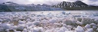 "Ice floes in the sea with a glacier in the background, Norway by Panoramic Images - 36"" x 12"""