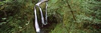 """High angle view of a waterfall in a forest, Triple Falls, Columbia River Gorge, Oregon (horizontal) by Panoramic Images - 36"""" x 12"""""""