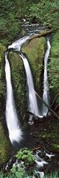 """High angle view of a waterfall in a forest, Triple Falls, Columbia River Gorge, Oregon (vertical) by Panoramic Images - 12"""" x 36"""""""