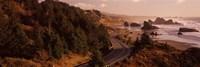 Highway along a coast, Highway 101, Pacific Coastline, Oregon, USA Fine Art Print