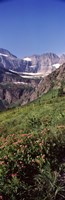 """Alpine wildflowers on a landscape, US Glacier National Park, Montana, USA by Panoramic Images - 12"""" x 36"""""""