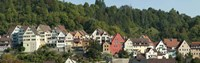 """Buildings in a city, Horb am Neckar, Northern Black Forest Region, Baden-Wurttemberg, Germany by Panoramic Images - 36"""" x 12"""""""