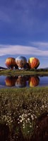 """Hot Air Balloon Rodeo, Steamboat Springs, Colorado (vertical) by Panoramic Images - 12"""" x 36"""""""