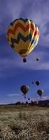 "Hot air balloons rising, Hot Air Balloon Rodeo, Steamboat Springs, Colorado by Panoramic Images - 12"" x 36"""