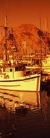"Fishing boats in the bay, Morro Bay, San Luis Obispo County, California (vertical) by Panoramic Images - 12"" x 36"" - $34.99"