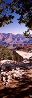 """Rock formations, Mather Point, South Rim, Grand Canyon National Park, Arizona, USA by Panoramic Images - 12"""" x 36"""""""