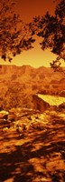 """Mountain range, Mather Point, Grand Canyon National Park, Arizona by Panoramic Images - 12"""" x 36"""""""