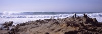 """Waves in the sea, Carmel, Monterey County, California, USA by Panoramic Images - 36"""" x 12"""""""