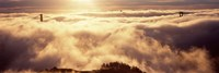 "Golden Gate Bridge Peaking through the fog, San Francisco, California by Panoramic Images - 36"" x 12"""