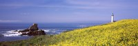 "Lighthouse on the coast, Pigeon Point Lighthouse, San Mateo County, California, USA by Panoramic Images - 36"" x 12"""