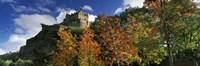 "Castle viewed through a garden, Edinburgh Castle, Edinburgh, Scotland by Panoramic Images - 36"" x 12"""