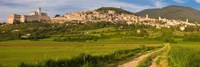 """Village on a hill, Assisi, Perugia Province, Umbria, Italy by Panoramic Images - 36"""" x 12"""""""