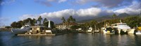 "Boats at a harbor, Lahaina Harbor, Lahaina, Maui, Hawaii, USA by Panoramic Images - 36"" x 12"""