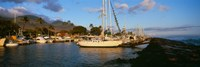 "Sailboats in the bay, Lahaina Harbor, Lahaina, Maui, Hawaii, USA by Panoramic Images - 36"" x 12"""