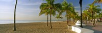 "Palm trees on the beach, Las Olas Boulevard, Fort Lauderdale, Florida, USA by Panoramic Images - 36"" x 12"""