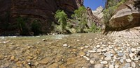 North Fork of the Virgin River, Zion National Park, Washington County, Utah, USA Fine Art Print