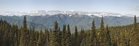 Mountain range, Olympic Mountains, Hurricane Ridge, Olympic National Park, Washington State, USA Fine Art Print