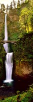 Footbridge in front of a waterfall, Multnomah Falls, Columbia River Gorge, Multnomah County, Oregon Fine Art Print
