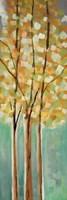Shandelee Woods II Fine Art Print