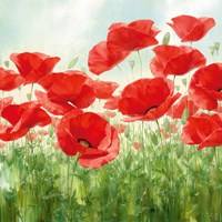 Holland Garden Fine Art Print