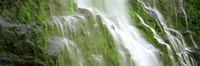 Waterfall in a forest, USA by Panoramic Images - various sizes