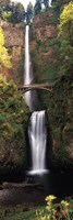 Waterfall in a forest, Multnomah Falls, Columbia River Gorge, Multnomah County, Oregon, USA Fine Art Print