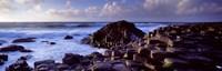 Rock formations on the coast, Giants Causeway, County Antrim, Northern Ireland Fine Art Print