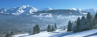 """Trees with snow covered mountains in winter, Combloux, Mont Blanc Massif, Haute-Savoie, Rhone-Alpes, France by Panoramic Images - 36"""" x 12"""""""