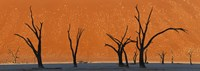 "Dead trees by red sand dunes, Dead Vlei, Namib-Naukluft National Park, Namibia by Panoramic Images - 36"" x 12"""