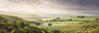 Foggy field, Villa Belvedere, San Quirico d'Orcia, Val d'Orcia, Siena Province, Tuscany, Italy by Panoramic Images - various sizes - $32.49