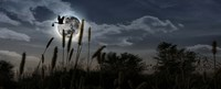 """Stork with a baby flying over moon by Panoramic Images - 36"""" x 12"""""""