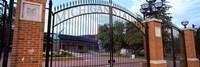 """Stadium of a university, Michigan Stadium, University of Michigan, Ann Arbor, Michigan, USA by Panoramic Images - 36"""" x 12"""""""