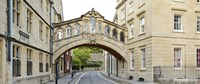 "Bridge across a road, Bridge of Sighs, New College Lane, Hertford College, Oxford, Oxfordshire, England by Panoramic Images - 36"" x 12"""