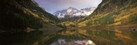Reflection of trees on water, Aspen, Pitkin County, Colorado, USA by Panoramic Images - various sizes