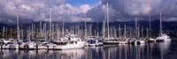 Boats at a harbor, Santa Barbara Harbor, Santa Barbara, California, USA Fine Art Print