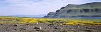 "Island in the pacific ocean, Santa Cruz Island, Santa Barbara County, California, USA by Panoramic Images - 36"" x 12"""