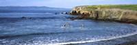 "Santa Cruz Island, Santa Barbara County, California by Panoramic Images - 36"" x 12"", FulcrumGallery.com brand"