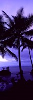 Palm trees on the coast, Colombia (purple) Fine Art Print