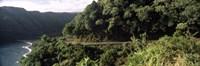 """Hana Highway, Maui, Hawaii by Panoramic Images - 36"""" x 12"""" - $34.99"""
