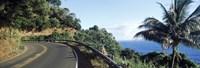 "Highway along the coast, Hana Highway, Maui, Hawaii by Panoramic Images - 36"" x 12"" - $34.99"