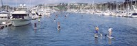 "Paddleboarders and yachts, Dana Point, California by Panoramic Images - 36"" x 12"""